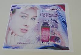 Bandera de folla impreso con imprimir WER-ES160 de 1,6 m (5 pés) eco