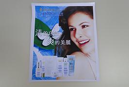 Banner de PVC impreso con impresora solvente eco de 3,2 m (10 pés) WER-ES3201