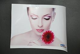 Adhesivo autoadhesivo printado por 3.2m (10 pés) eco impresora solvente WER-ES3202